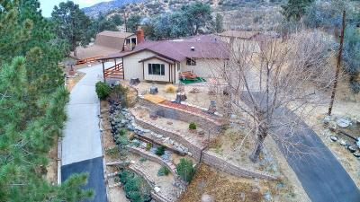 Wrightwood Single Family Home For Sale: 1641 Desert Front Road