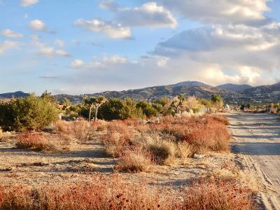 Pinon Hills Residential Lots & Land For Sale: Burbank Road