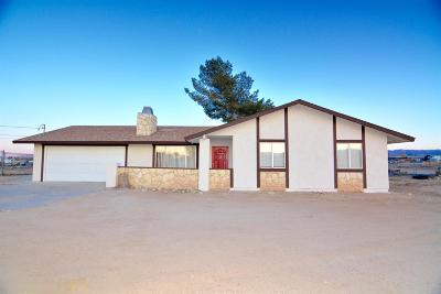 Hesperia Single Family Home For Sale: 10565 9th Avenue
