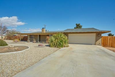 Apple Valley Single Family Home For Sale: 14251 Tawya Road