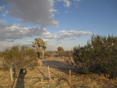 Victorville Residential Lots & Land For Sale: 8686 Goss Rd Road