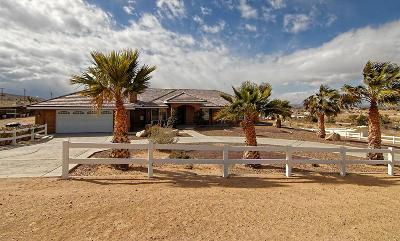 Apple Valley Single Family Home For Sale: 9424 Monte Vista Drive