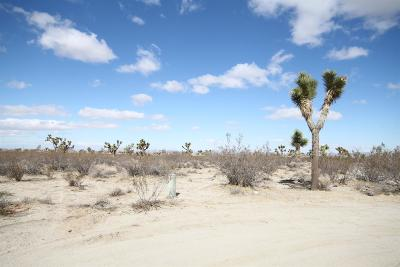 Pinon Hills Residential Lots & Land For Sale: La Mesa Road