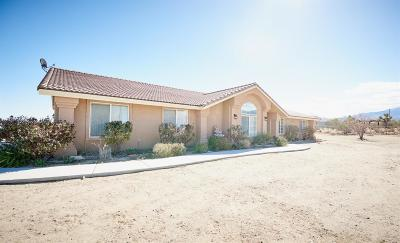 Pinon Hills Single Family Home For Sale: 12253 Oasis Road