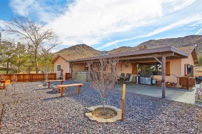 Apple Valley Single Family Home For Sale: 14625 Sherri Lane