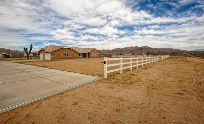 Apple Valley Single Family Home For Sale: 23604 Chekwa Road