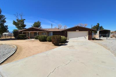 Apple Valley Single Family Home For Sale: 18280 Hiawatha Road