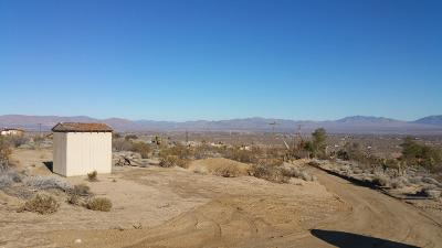 Lucerne Valley Residential Lots & Land For Sale: Richard Road