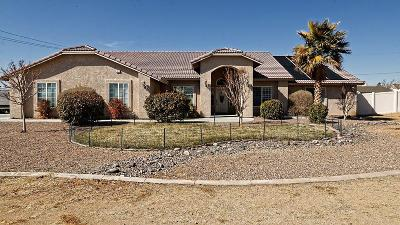 Apple Valley Single Family Home For Sale: 19420 Roanoke Road