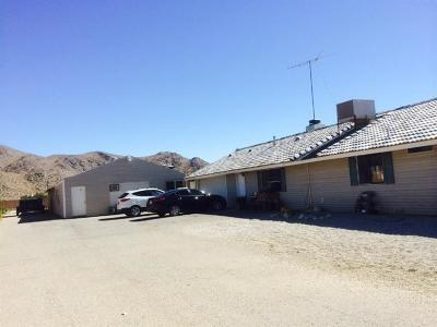 Apple Valley Single Family Home For Sale: 12341 Milpas Drive