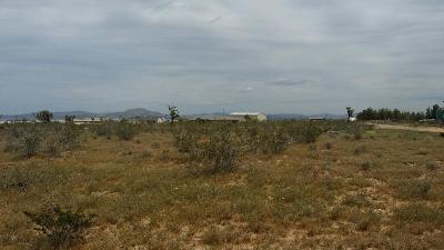 Adelanto Residential Lots & Land For Sale: Skylane Court
