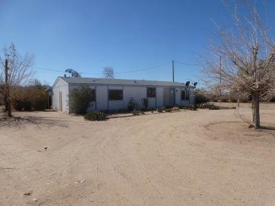 San Bernardino County Single Family Home For Sale: 42675 Coventry Street