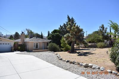 Hesperia Single Family Home For Sale: 9205 Jacaranda Avenue