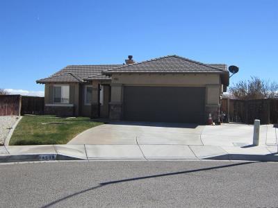 Adelanto Single Family Home For Sale: 14505 Yarrow Court