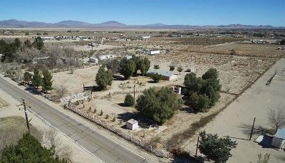 Lucerne Valley Single Family Home For Sale: 10277 Custer Avenue