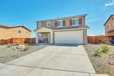 Adelanto Single Family Home For Sale: 14145 Purple Canyon Road