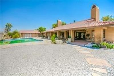 Apple Valley Single Family Home For Sale: 14546 Riverside Drive