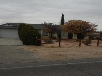 Hesperia Single Family Home For Sale: 16190 Eucalyptus Street