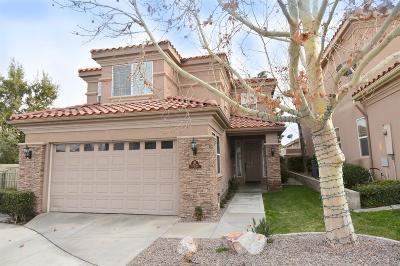 Apple Valley Single Family Home For Sale: 17885 Avenida De Sonoma #19