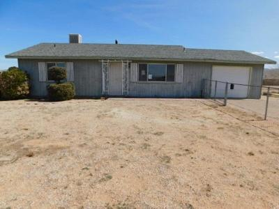 Apple Valley Single Family Home For Sale: 10811 Lancelet Road