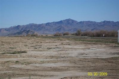 Lucerne Valley Residential Lots & Land For Sale: 1 Bradford Avenue