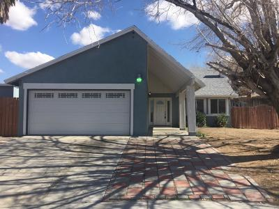Barstow Single Family Home For Sale: 2033 Notre Dame Court