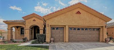 Apple Valley Single Family Home For Sale: 19441 Westfalia Street