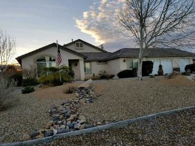 Apple Valley Single Family Home For Sale: 13492 Bordeaux Court