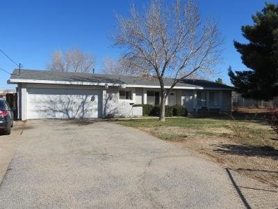 Hesperia Single Family Home For Sale: 17844 Hackberry Street