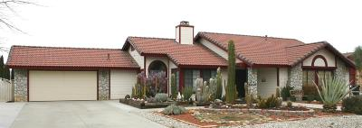 Apple Valley Single Family Home For Sale: 13397 Ivanpah Road