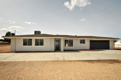 Apple Valley Single Family Home For Sale: 15350 Erie Road