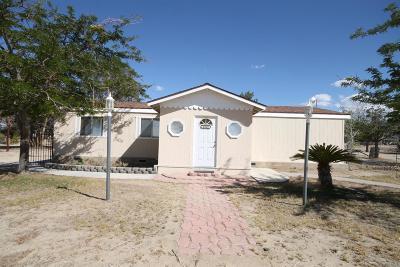 Pinon Hills Single Family Home For Sale: 13269 Primavera Road
