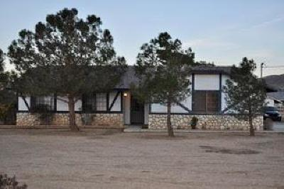 Apple Valley Single Family Home For Sale: 9455 Mesquite Street