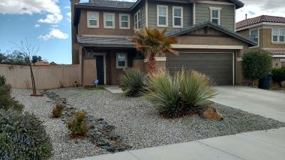 Victorville Single Family Home For Sale: 16949 Grand Mammoth Place
