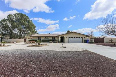 Apple Valley Single Family Home For Sale: 14337 Rincon Road