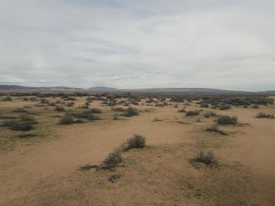 Lucerne Valley Residential Lots & Land For Sale: Sun Rose Avenue