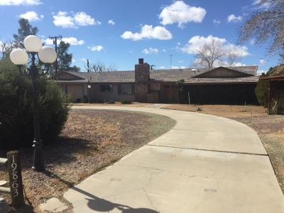 Apple Valley Single Family Home For Sale: 19863 Serrano Road