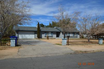 Apple Valley Single Family Home For Sale: 21016 Lone Eagle Road