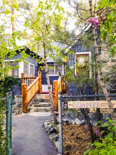 Wrightwood Single Family Home For Sale: 1677 Thrush Road