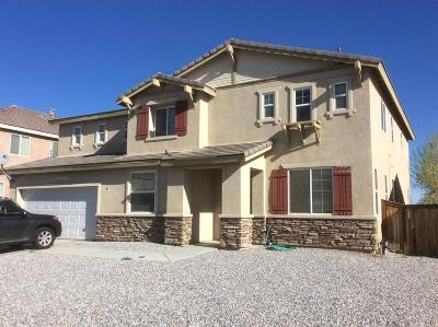 Victorville Single Family Home For Sale: 11818 Indian Hills Lane
