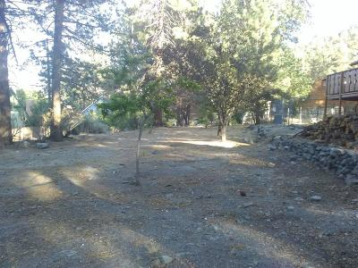 Wrightwood Residential Lots & Land For Sale: Orchard Drive