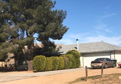 Apple Valley Single Family Home For Sale: 16661 Central Road