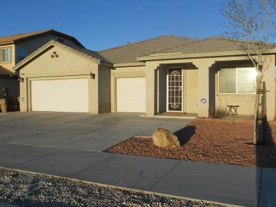 Hesperia Single Family Home For Sale: 10667 Topaz Avenue