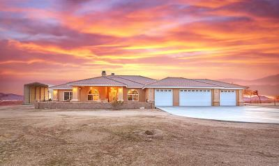 Apple Valley Single Family Home For Sale: 23853 Nalatapa Road