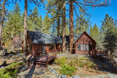 Wrightwood Single Family Home For Sale: 1102 Eagle Road