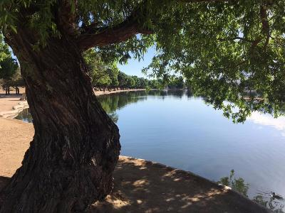 Hesperia Single Family Home For Sale: 7686 Arrowhead Lake Road