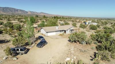 Pinon Hills Single Family Home For Sale: 10210 Wintergreen Road