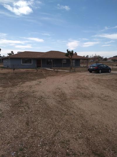 Hesperia Single Family Home For Sale: 11190 Peach Avenue