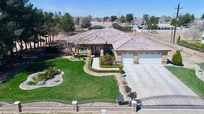 Apple Valley Single Family Home For Sale: 14634 Rincon Road