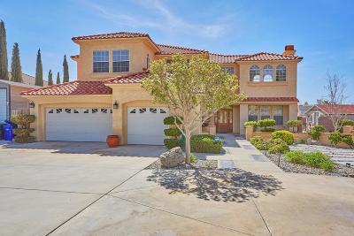 Apple Valley Single Family Home For Sale: 16757 Menahka Road